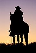 cowboysilhouettetb