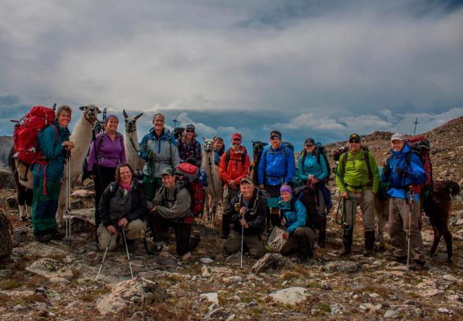 Group and Llamas