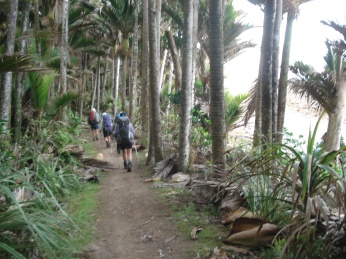 Our final day was a 10 milie hike along the coast - pristine beaches bordered by pristine jungle.